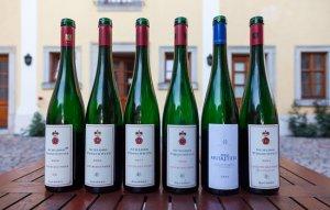 טעימות יין ברודסהיים