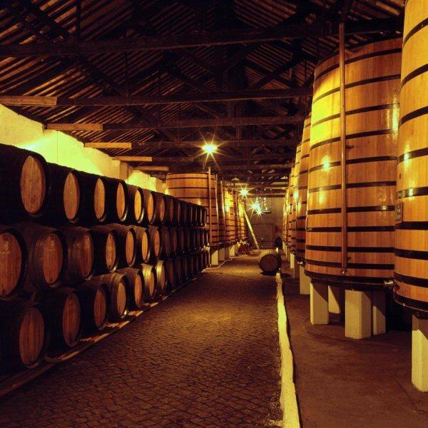 מרתף יין בוילה נובה דה גאיה